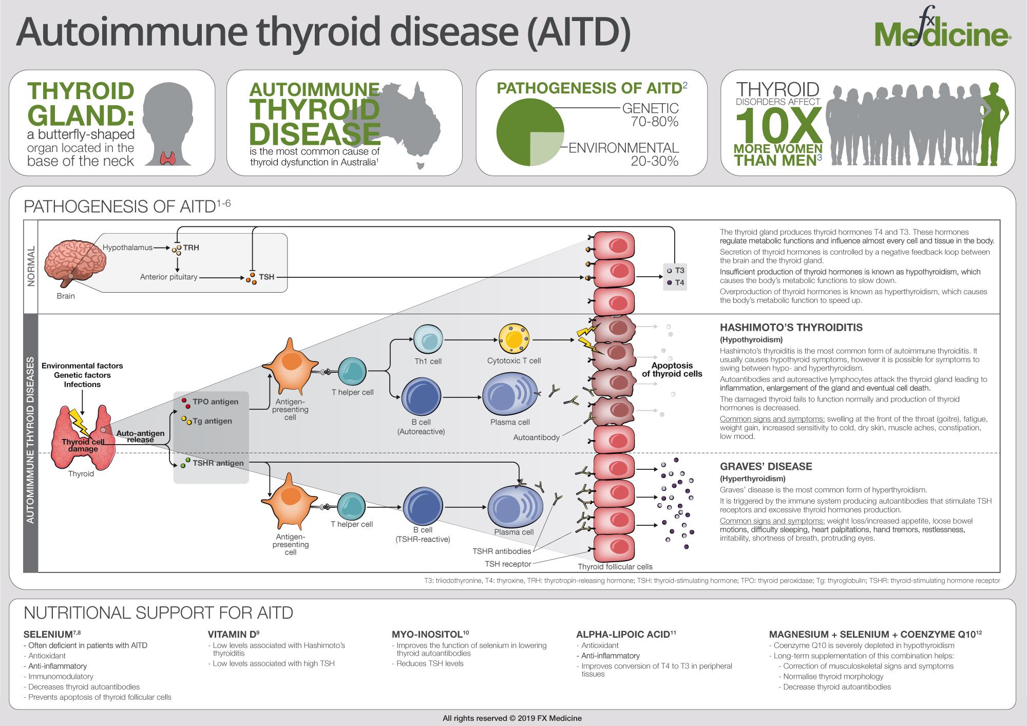 Autoimmune Thyroid Disease Fx Medicine