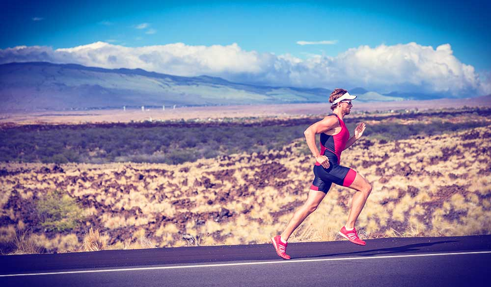 Endurance exercise influences mitochondrial and microbiome crosstalk