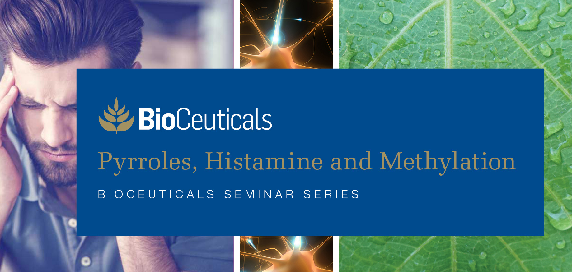 March 2019 | BioCeuticals Pyrroles, Histamine and Methylation