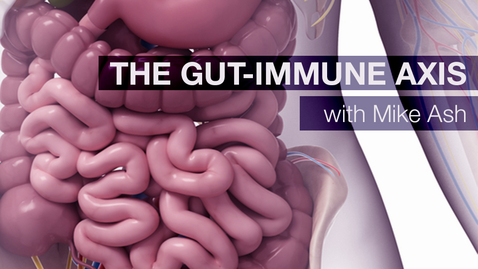 The Gut-Immune Axis with Mike Ash