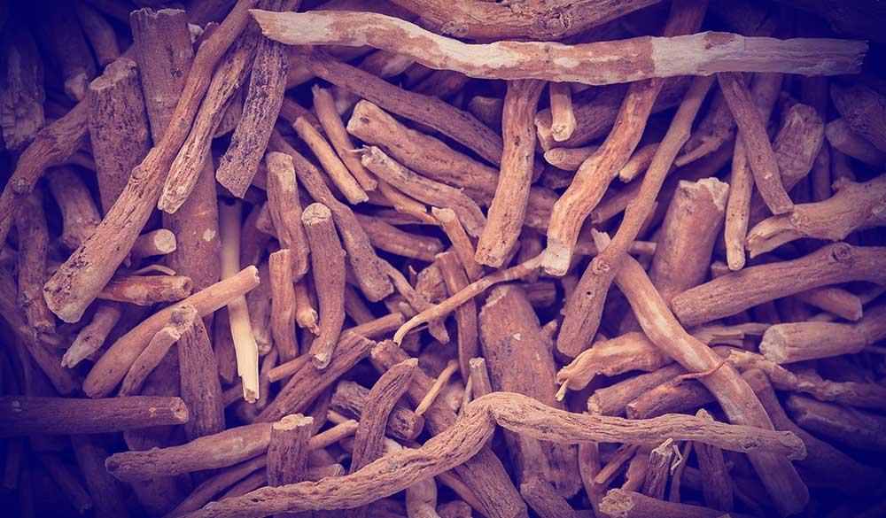 Herbal Management for Stress Fx Medicine