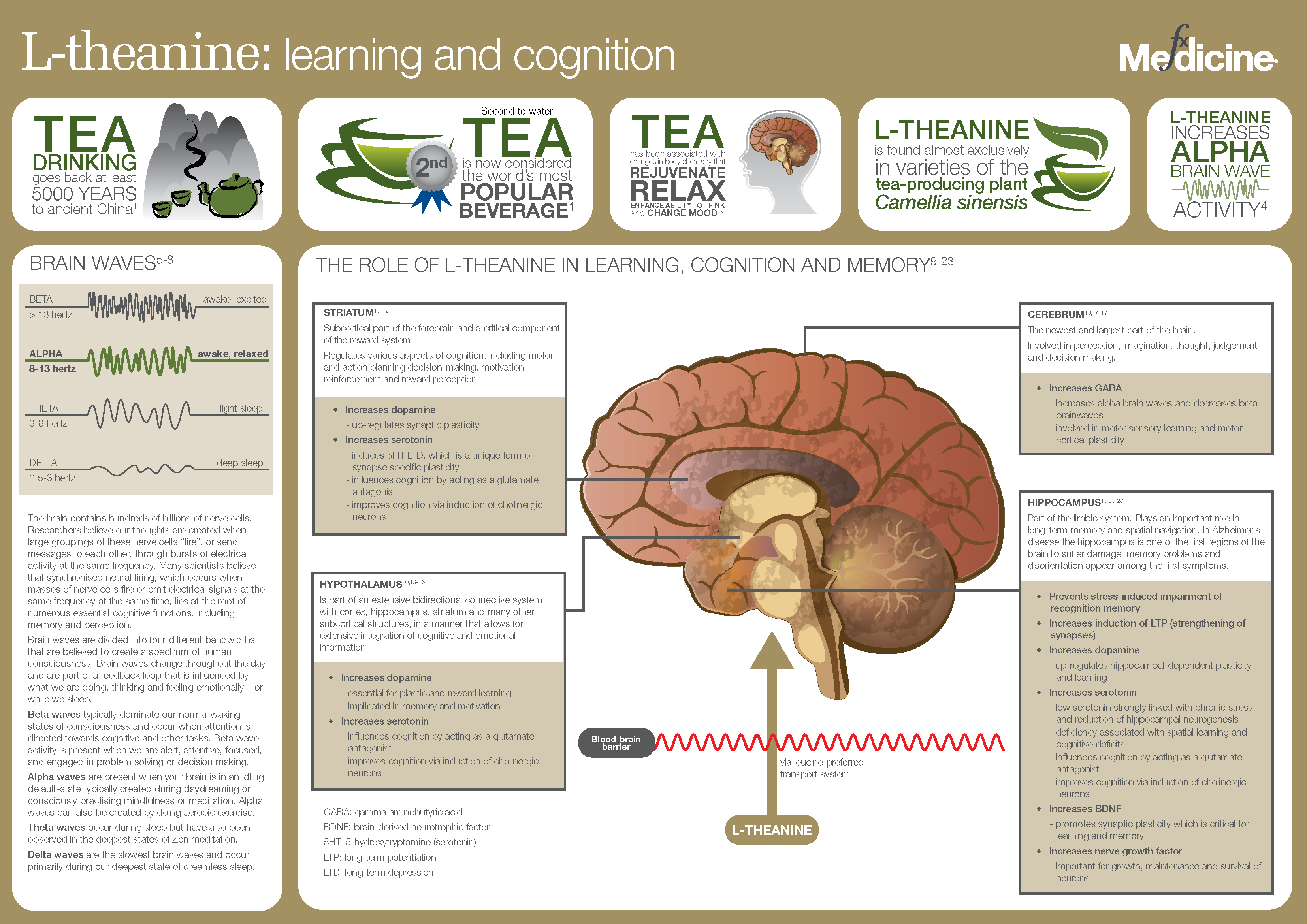 L-theanine-Learning%20and%20cognition.png
