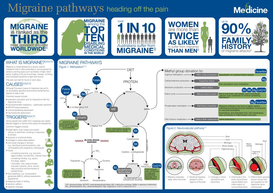 Migraine-pathways.png
