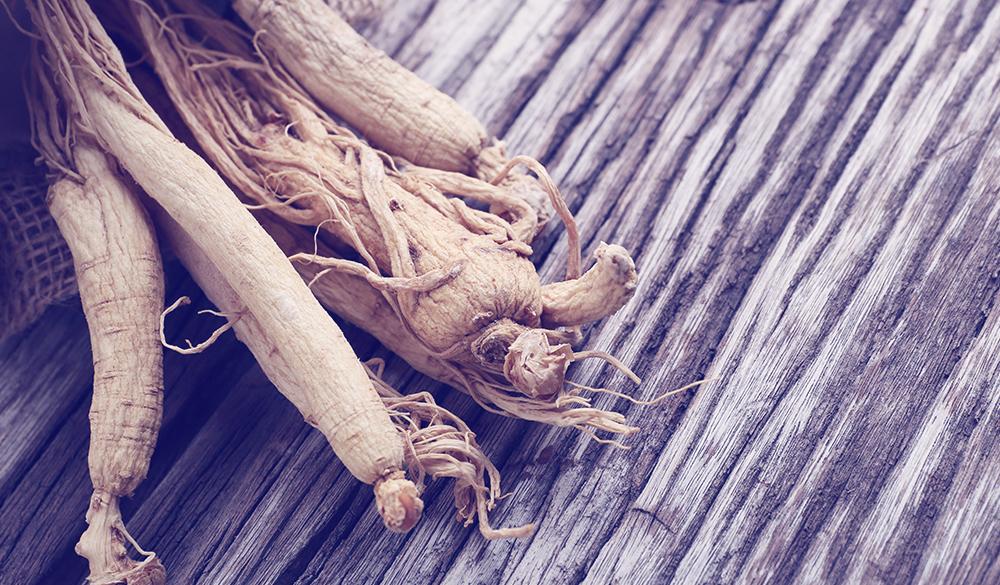 Neuroprotective Herbal Medicines