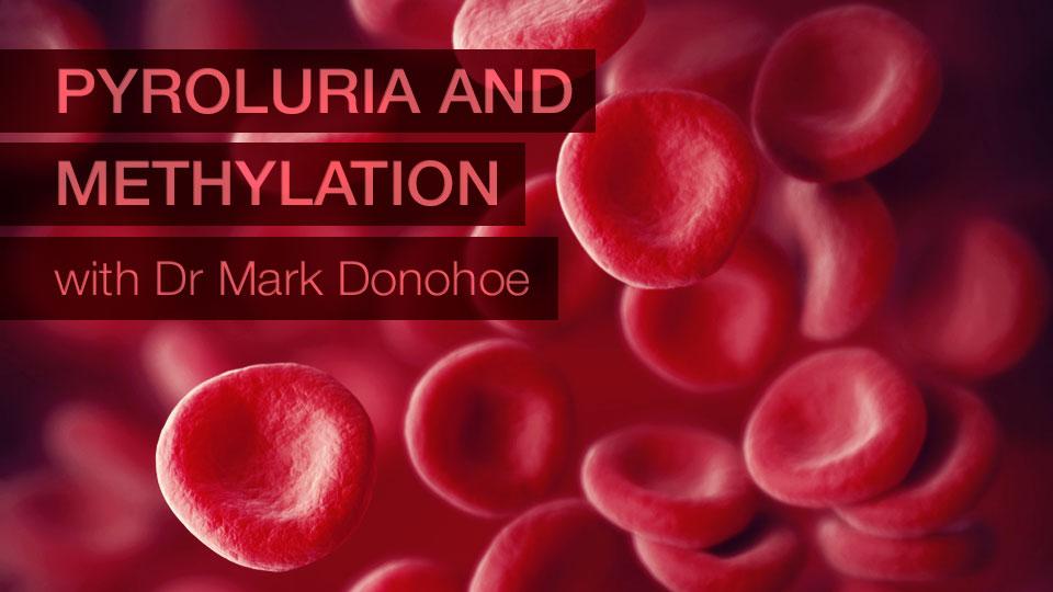 Pyroluria and Methylation