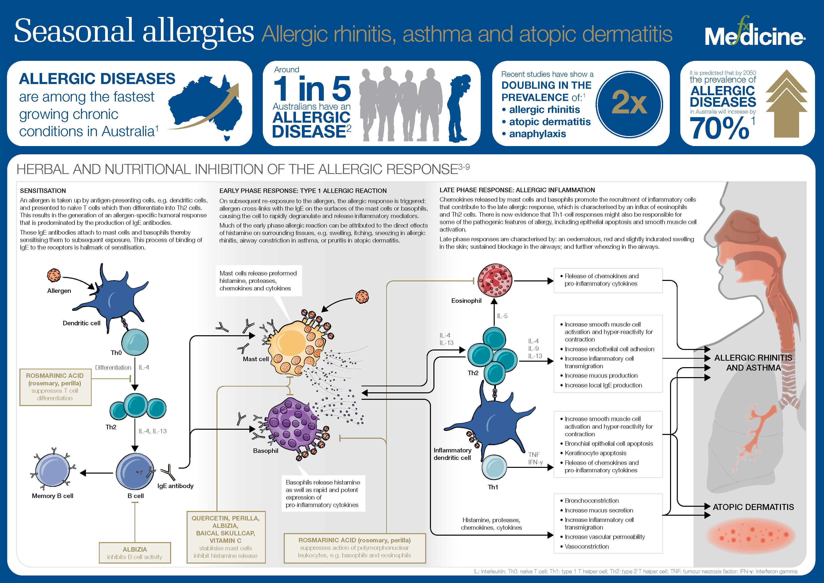 Seasonal allergies_INFOGRAPHIC_FX MEDICINE.png