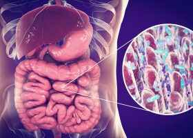 A balanced microbiome supports immune health