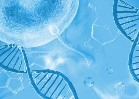 Fertility Management and Nutrigenomics