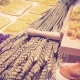Can probiotics modulate autoimmune processes