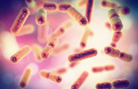 Oestrogen Metabolism and the Microbiome