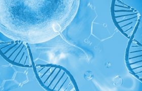 Fertility Management and Nutrigenomics