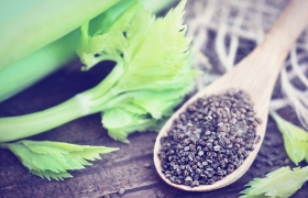 Herbal Considerations for Gout